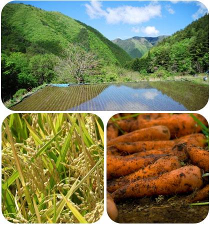 自然との調和 環境風土との調和 人としての生理との調和