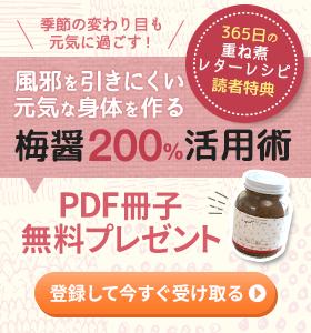 梅醤200%活用術 PDF冊子無料プレゼント